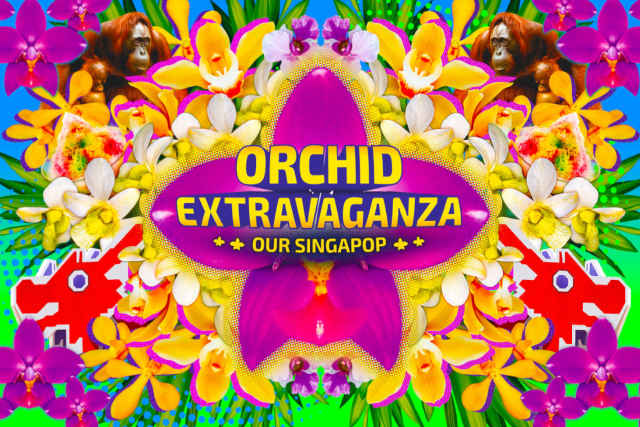 Orchid Extravaganza our singapop