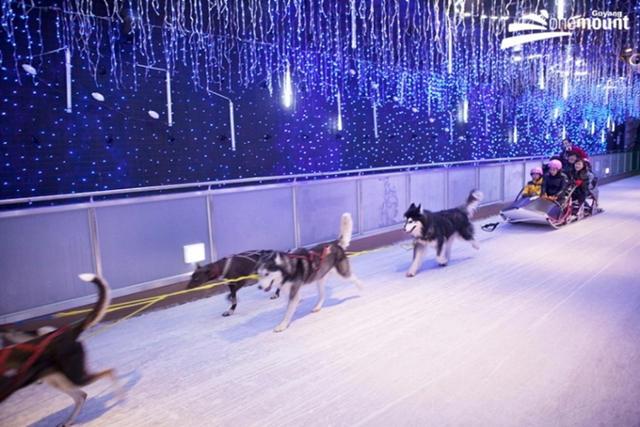 Onemount Snow Park Korea