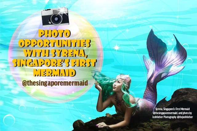 chinese swimming club open house with mermaid