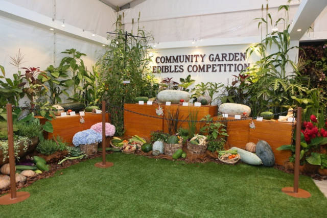 Gardening with Edibles & Community Garden Festival CGF 2020 – Free