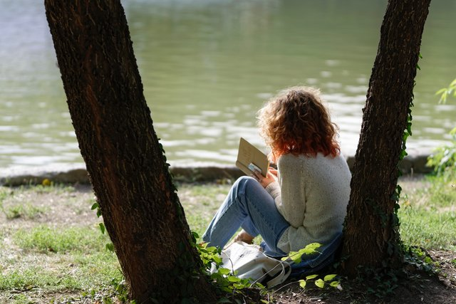 reading a book by the lake