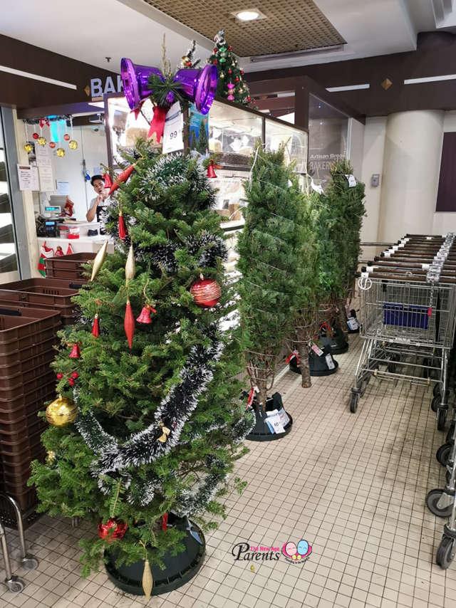 cold storage real christmas tree