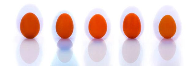 Eggs rich in selenium