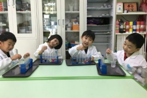 Terraminds Science and Robotics Workshop for kids