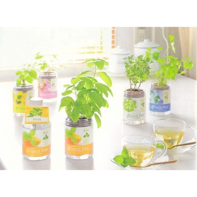 Growing Kit for Herbs, Vegetables, Plants Shopee Singapore