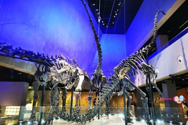 lee kong chian museum dinosaur
