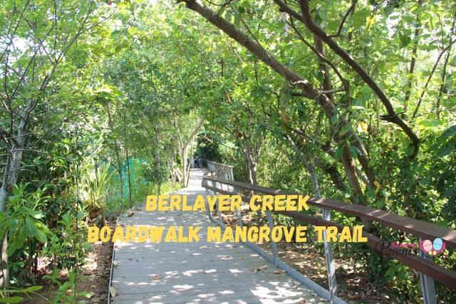 Berlayer Creek Boardwalk Mangrove trail