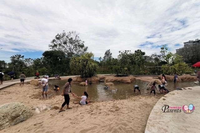 Clusia Cove Jurong Lake Gardens