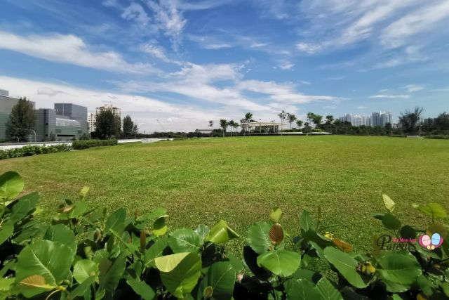 Keppel Marina East Desalination Plant Green Roof
