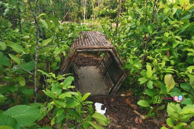 Nature Playgarden for Children HortPark Magical Woods