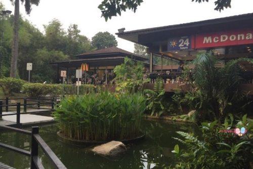Ridout Tea Garden McDonalds