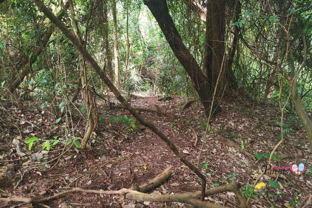 How to Get to Keppel Hill Japanese Tomb