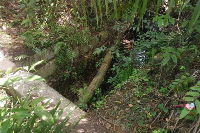 Keppel Hill Reservoir Drain