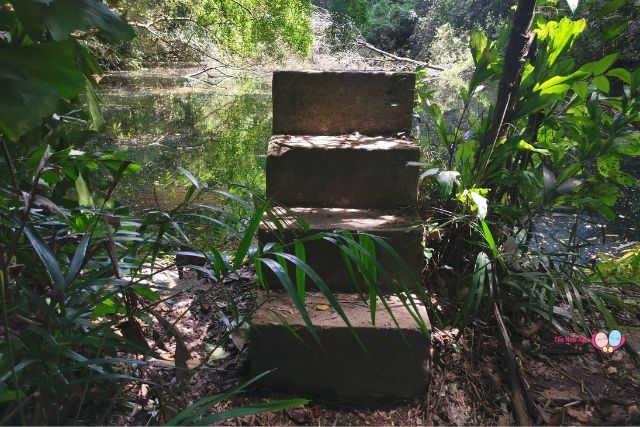 Keppel Hill Reservoir Steps to Jump