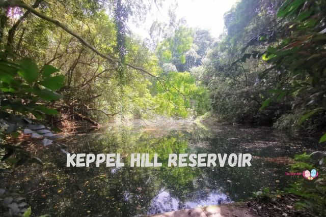 Keppel Hill Reservoir