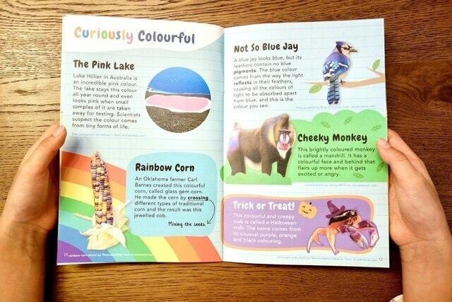 Tinkerer Box STEM toys for kids