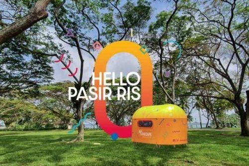 arts in your neighbourhood hello pasir ris