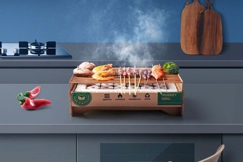 Disposable and Portable BBQ Grill