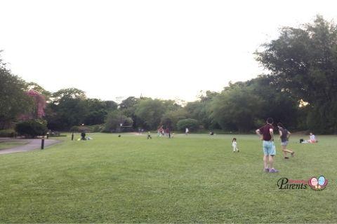 best picnic spots singapore botanic gardens