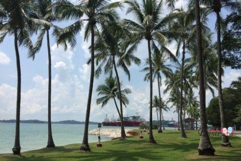 picnic places singapore pasir ris park