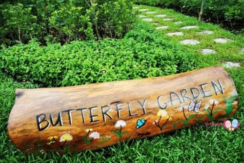 Bukit Gombak Park Butterfly Garden