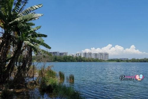 abandoned tampines quarry