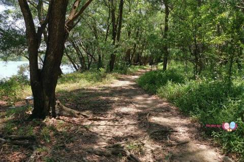 tampines quarry trail