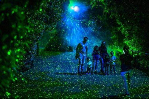 Rainforest Lumina Singapore Zoo