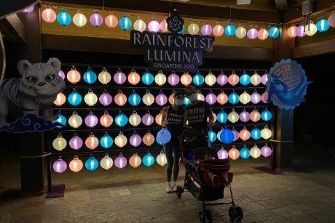 Mid Autumn Festival Lantern Rainforest Lumina