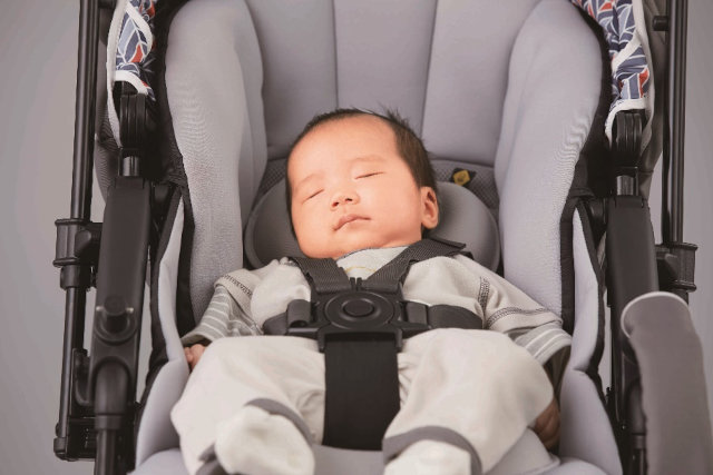 Strollers For Newborn: Everything You Need To Know